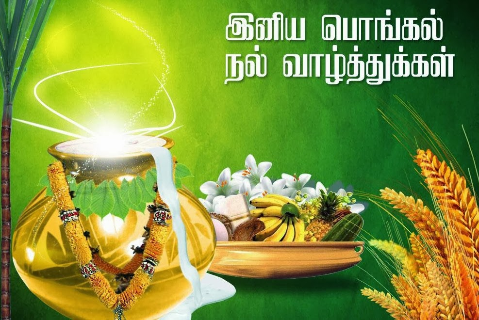 Pongal 2014 wishes messages sms in english pongal greetings cards pongal 2014 wishes messages sms in english m4hsunfo