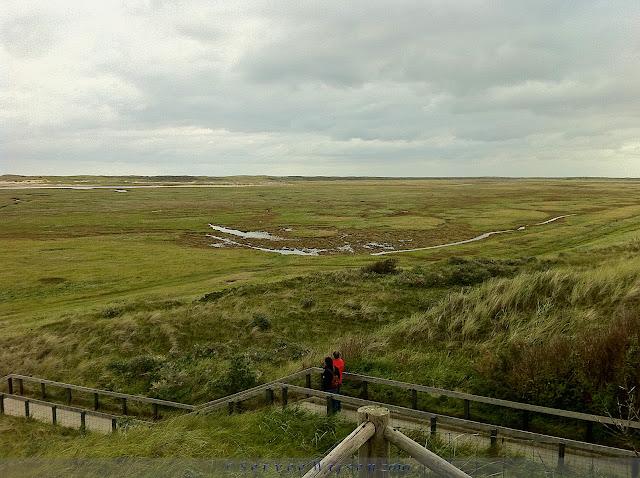 Uitzicht over de Slufter - View over de Slufter