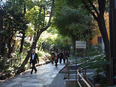 新宿遊歩道公園四季の道