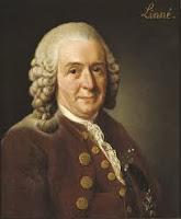 Linné naturalista sueco