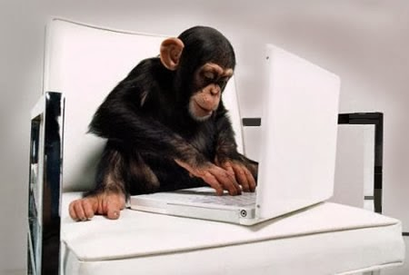 http://4.bp.blogspot.com/-raJl1RNzqgY/Uqy31WVymaI/AAAAAAAAF_A/rLDqpEqAcxc/s1600/aap-gebruikt-laptop.jpg