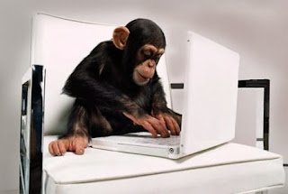funny picture: monkey used laptop