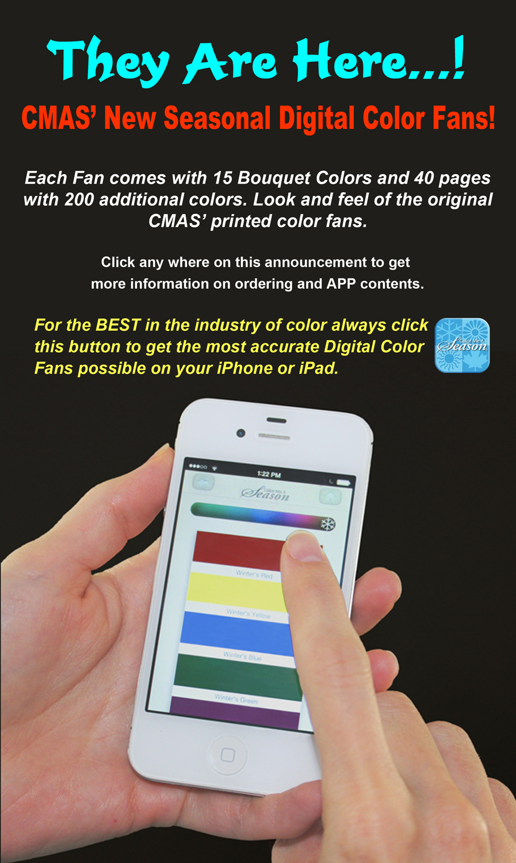Coloring by numbers for seniors app - Color Me A Season Digital Color Fans App