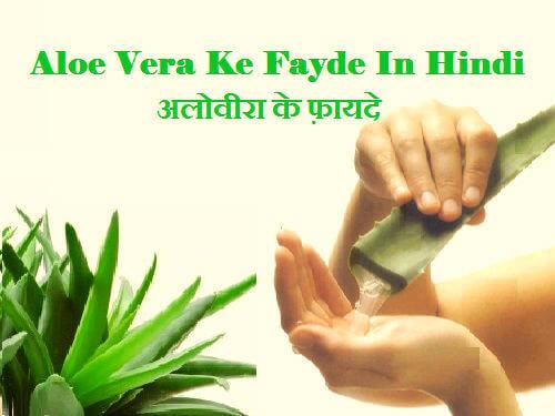 Aloe Vera Ke Fayde In Hindi