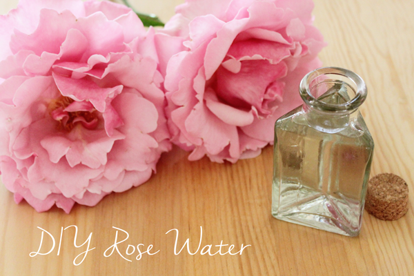 DIY: How to Make Rose Water