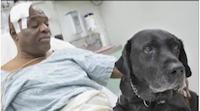 Christmas Miracle! Dog and Blind Man Fall Onto Subway Tracks: Amazing Ending!