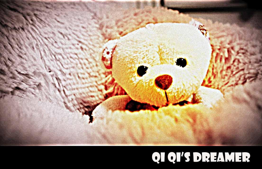 Qi Qi's Dreamer
