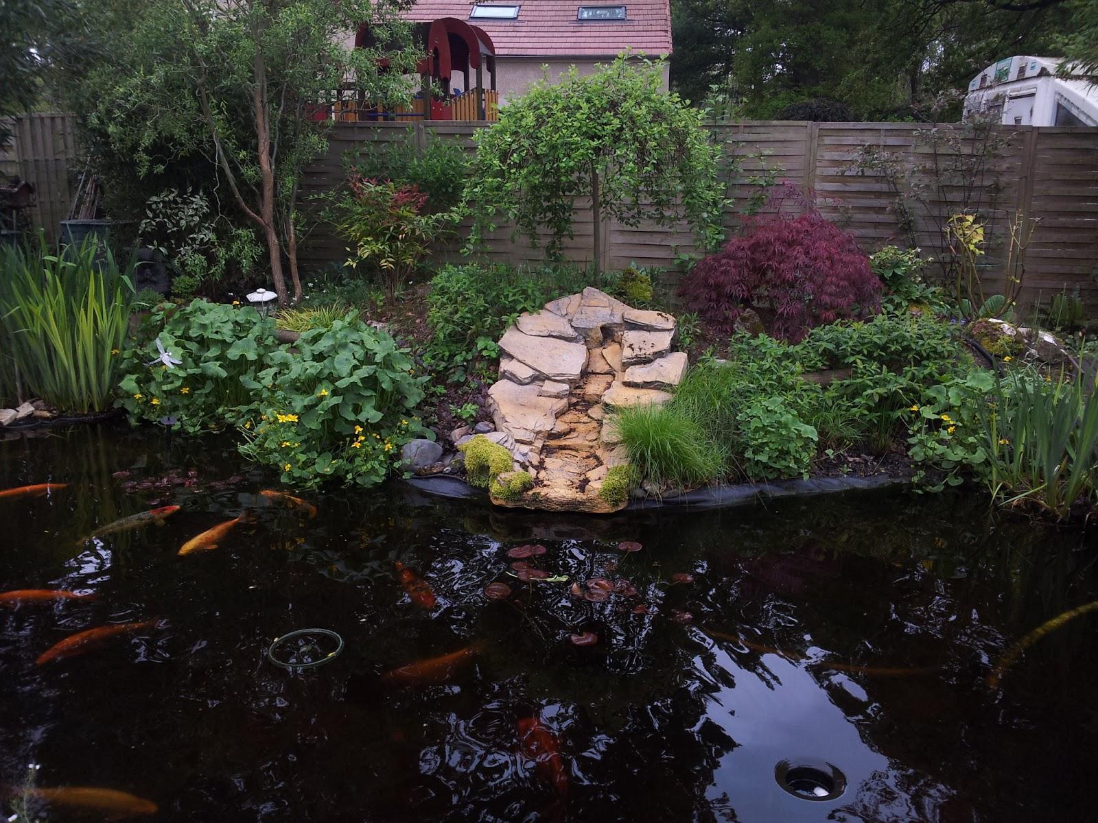Mon petit bassin de jardin remplacement cascade en r sine par une lanterne japonaise - Petit bassin de jardin avec cascade ...