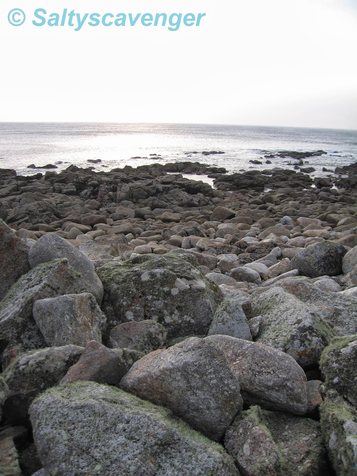 an introduction to the comparison of upper and lower shore rock pools Manmade rocky shore habitats create stress on existing biota  rock pools and boulder  index was higher in natural rocky shore habitats in comparison with.