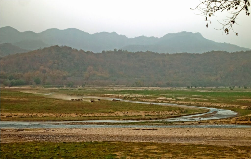 The Ramganga River