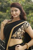 Sagarika glamorous photos in saree-thumbnail-16