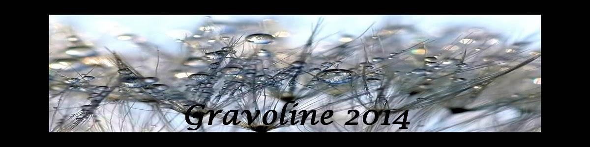 Gravoline 2014