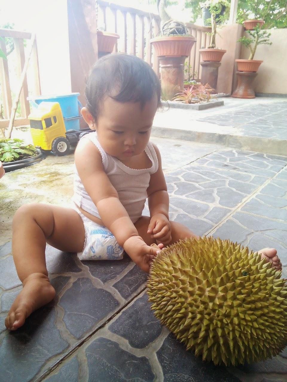 duren durian