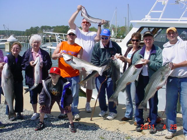 Saltwater report maryland striped bass fishing charters for Va fishing charters