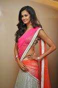 Shubra Aiyappa glamorous in half saree-thumbnail-3
