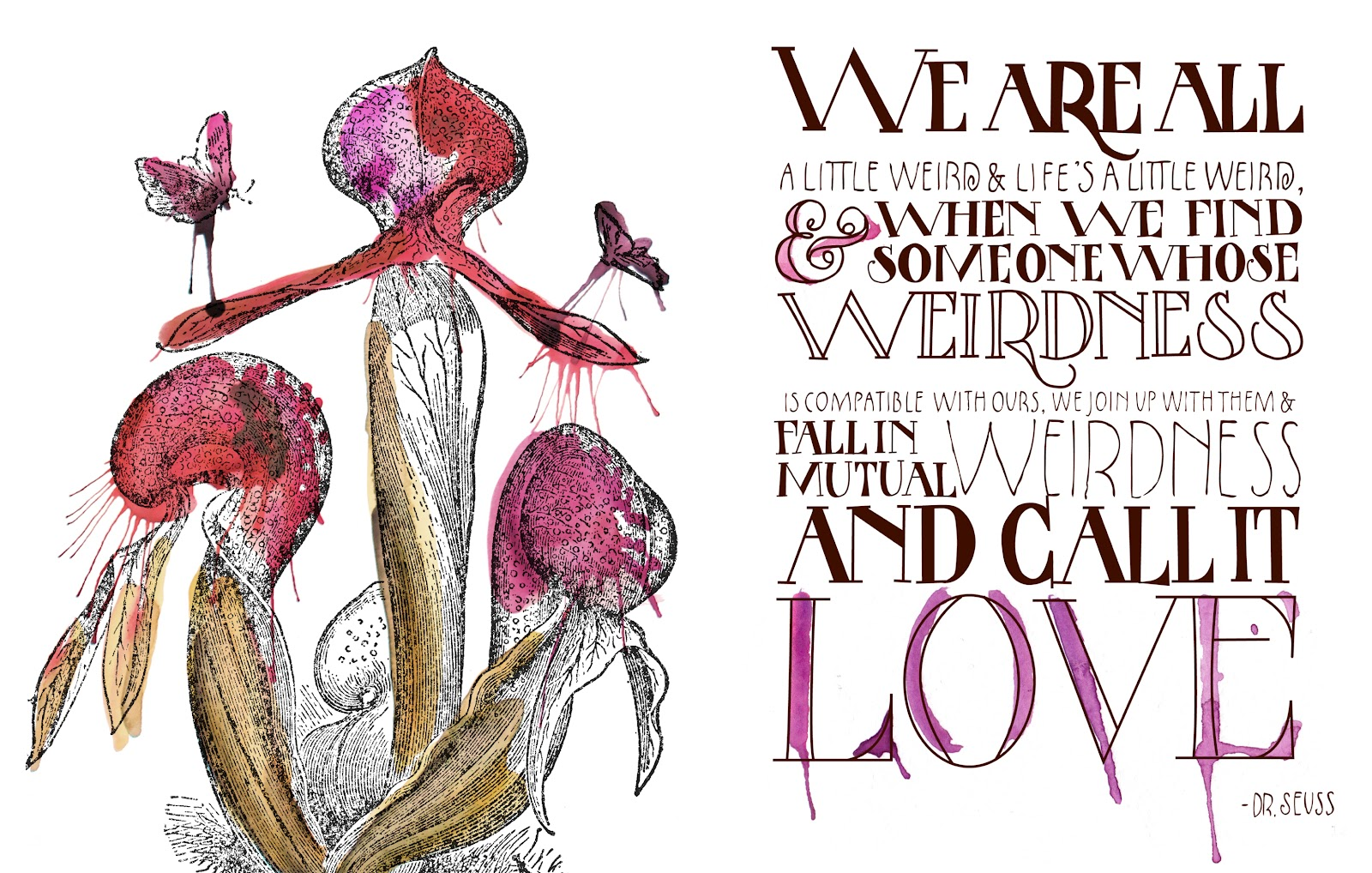 Love Quote Dr Seuss Antiquaria The Antiquarian Post  The Artwork
