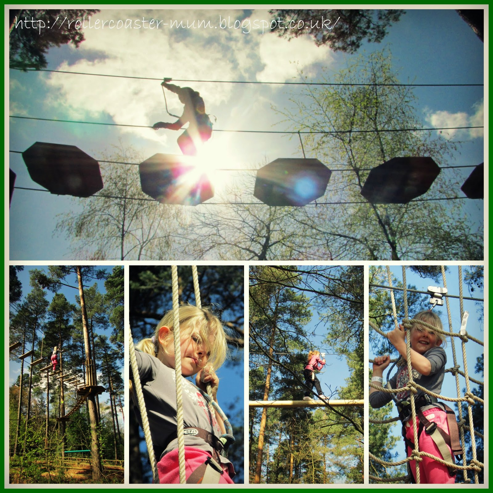 Go Ape Tree Top Junior, Alice Holt Forest