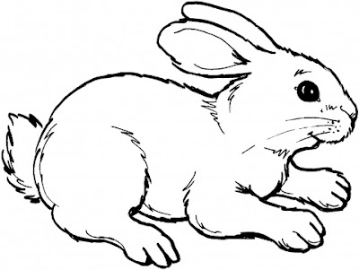 cute animal rabbit coloring books sheet for kids drawing cartoon coloring pages - Rabbit Coloring Page