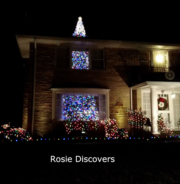 Rosie Discovers Nifty Christmas Light Displays In