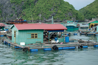 (Vietnam) - Halong Bay - Floating Village
