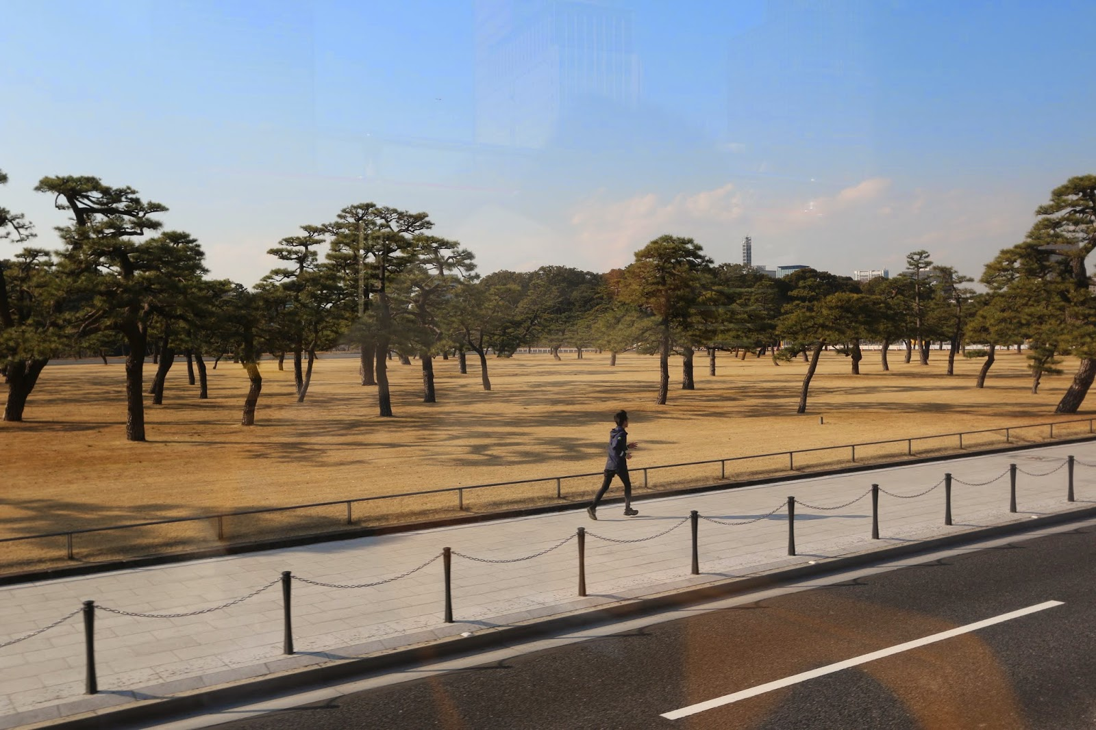 It looks like a painting (the backview from Imperial Palace) during Tokyo bus tour from Imperial Palace to Ginza and Marunouchi Course