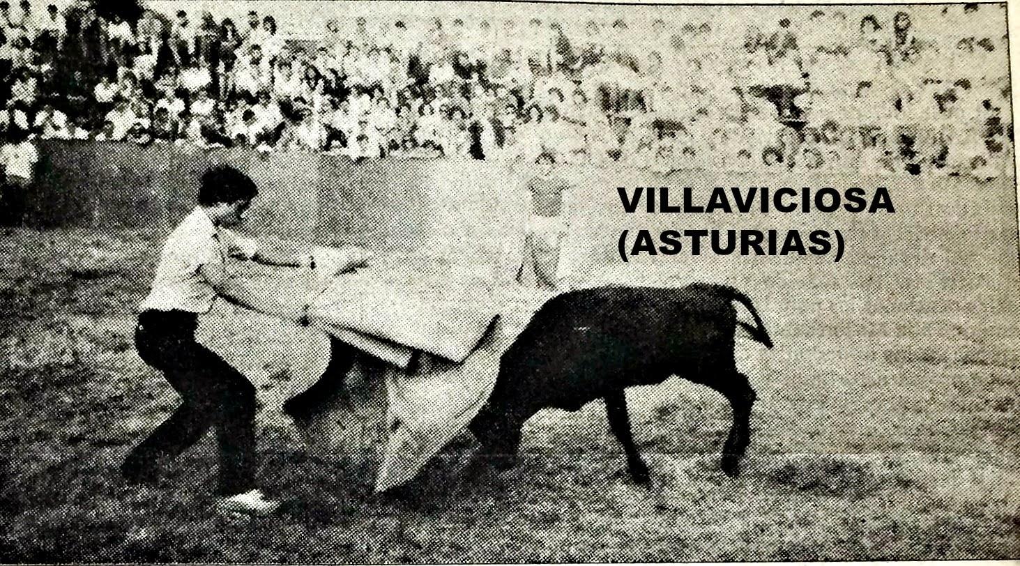 VILLAVICIOSA ASTURIAS TOROS