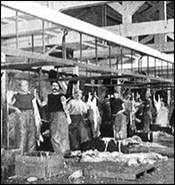 LA REVOLUCION OBRERA DE MAGALLANES, 1919