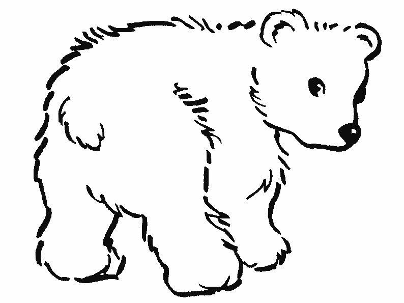 Animales en caricaturas para colorear - Imagui