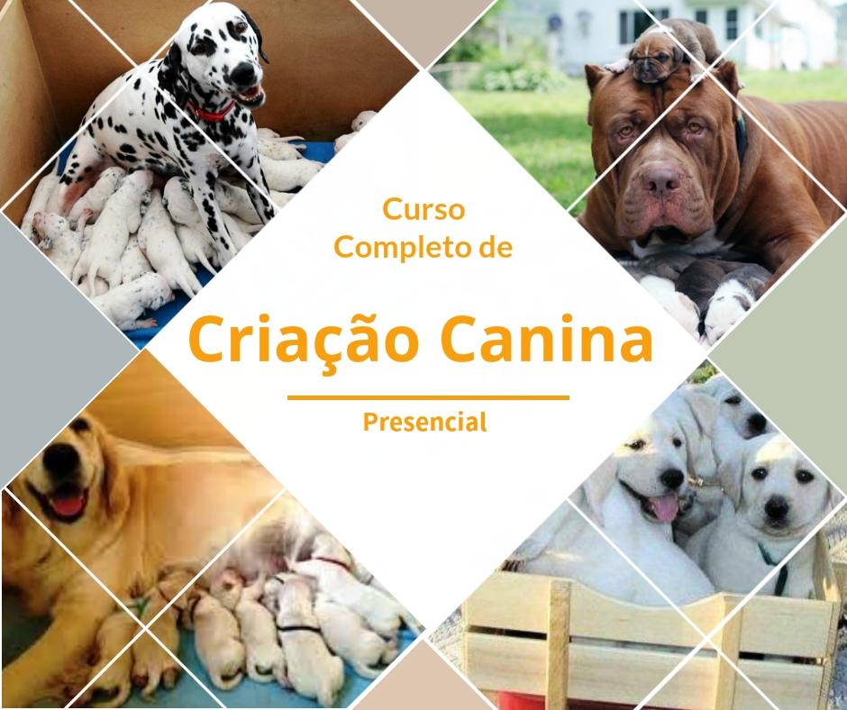 Curso Completo de Criação Canina