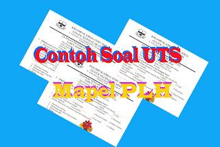 Download Soal UTS Mapel PLH