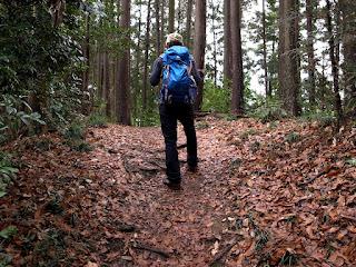 今年初の山歩き