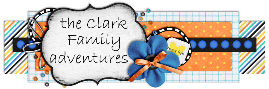The Clark Family Adventures