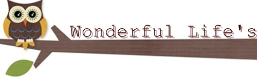 Wonderful life's