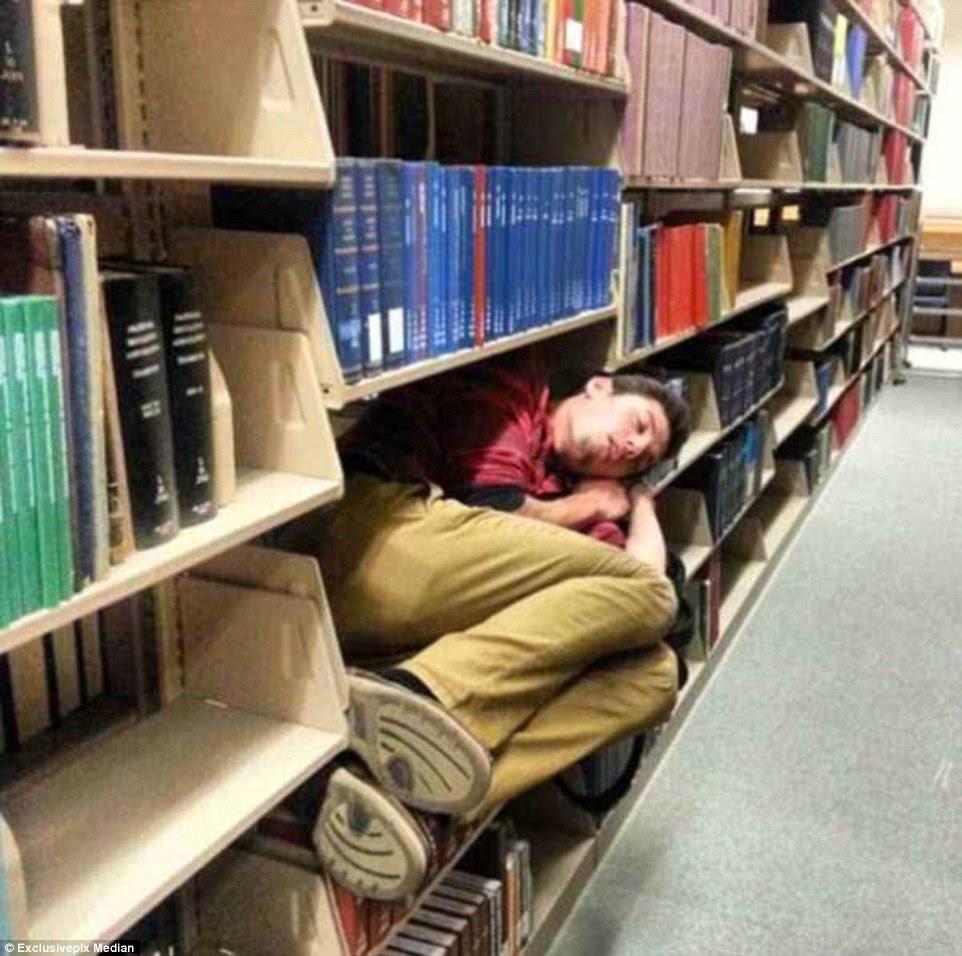 ينام داخل أرفف المكتبة