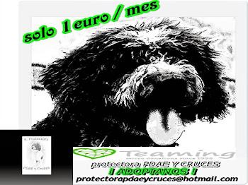UNETE AL TEAMING,pincha en el enlace y dona 1 euro al mes