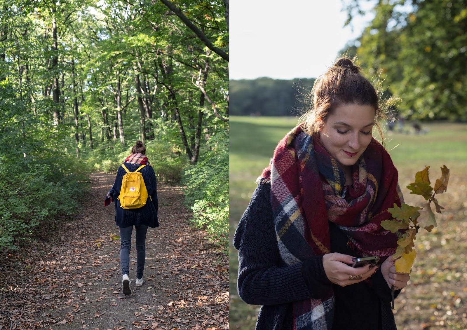 Waldspaziergang im Herbst - Berlin Volkspark Jungfernheide