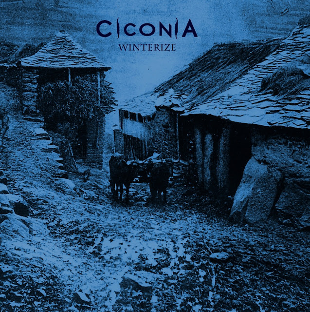 Detail from Ciconia Upcoming Album, Winterize, Detail from Ciconia Upcoming Album Winterize, Ciconia Winterize