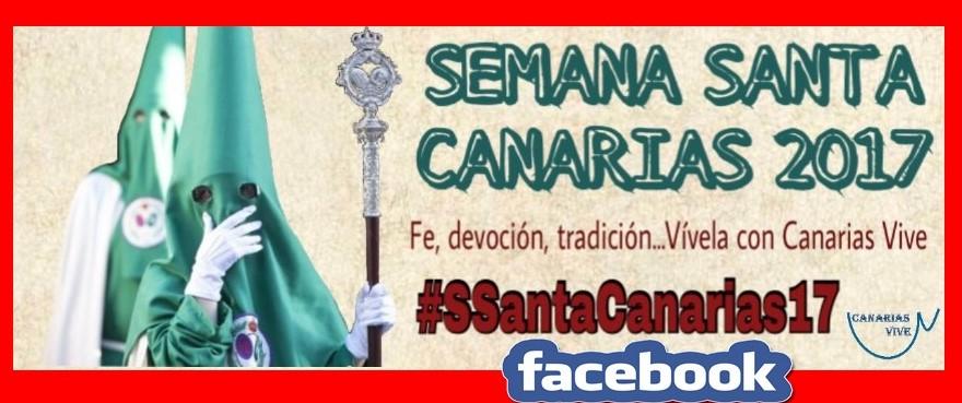 CANARIAS VIVE