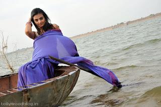 nikitha_narayana_hot_saree_stills_photos_009.jpg