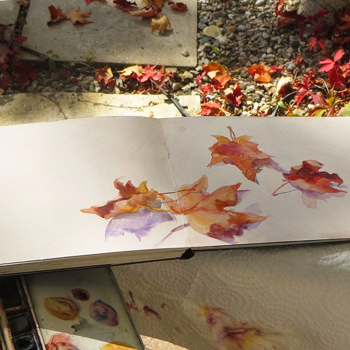 Fallen Leaves watercolour sketch in Moleskine watercolour sketchbook Shannon Reynolds