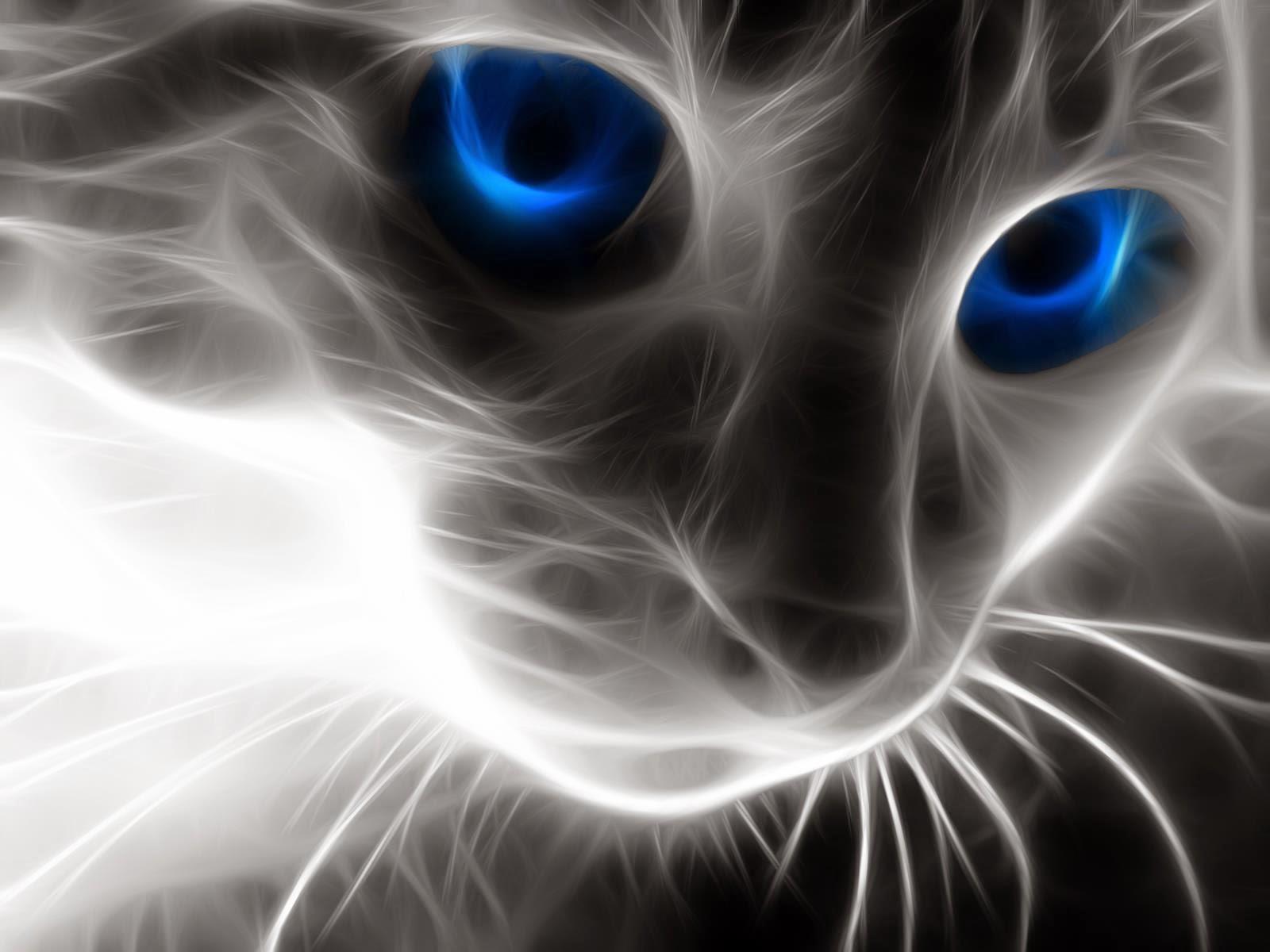 chat totalement gratuit nous liberin