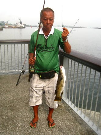 Mullet or Chow Orh [ 草乌 ] caught by Ah Heng weighing 1.5kg plus at Woodland Jetty.