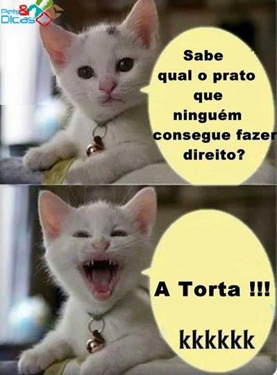 Fotos de piadas de gato para publicar Facebook