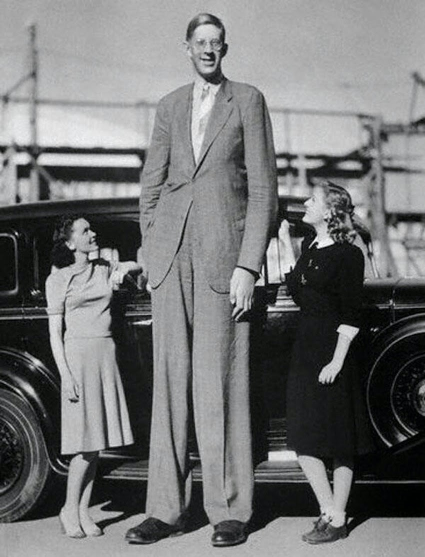 worksheet 8 Ft In Inches parablesblog foundations giants on the earth by time robert graduated from high school he was 8 feet 4 inches tall at his death had obtained a height of 11 inches