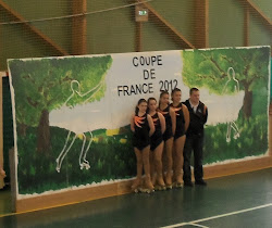 Coupe de France de patinage artistique  vendredi 8 juin 2012