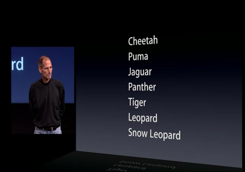 Apple Operating Systems Cat Names