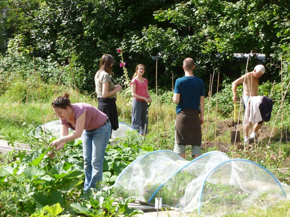Tooting Community Garden Open