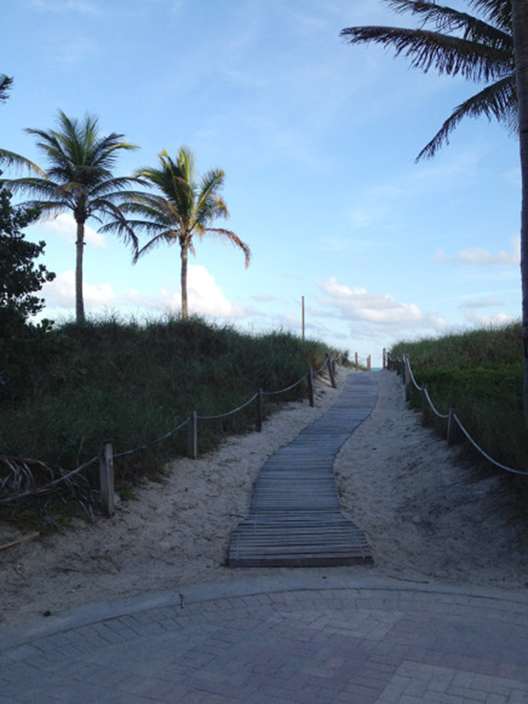 Pathway to the beach, paradise, summer