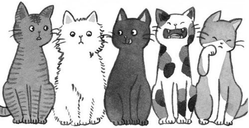 This Is A Drawing Of Cats This Is A Drawing Of A Cat Ea
