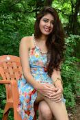 New actress Aarti Chhikara glam pics-thumbnail-9